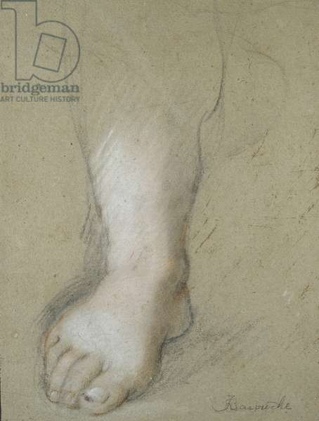 Study of a Foot (black, red, pink, and white chalks on a greyish paper)