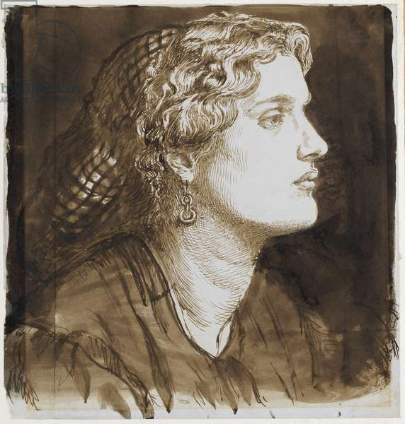 Portrait of Fanny Cornforth (pen and brown ink on paper)