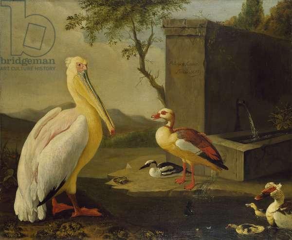 Oriental Birds (oil on canvas)