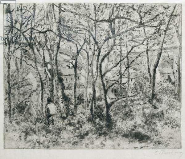 Paysage sous Bois, à l'Hermitage (Pontoise), 1879 (aquatint and drypoint)