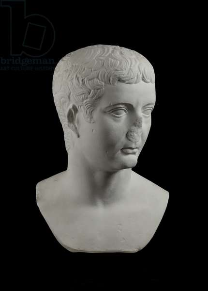 Cast of portrait head of Tiberius, Itlay, original dated AD 14-37 (plaster)
