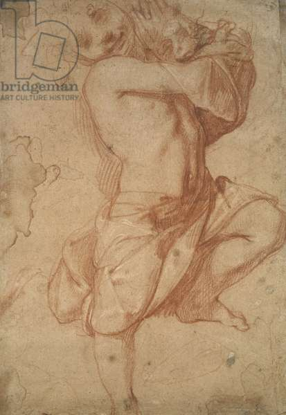 Semi-nude Boy (chalk on paper)