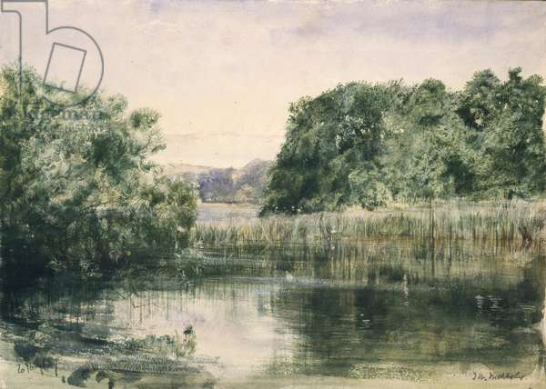 View of a Lake with Trees, 1857 (watercolour on paper)