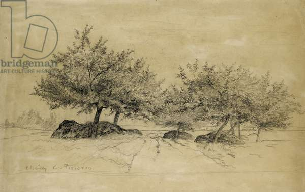Recto: Chailly, c. 1859 (charcoal on beige paper)