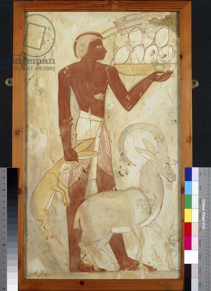 Copy of wall painting, private tomb 78 of Horemheb, Thebes, servant with ibex, hare and ostrich eggs (paint)
