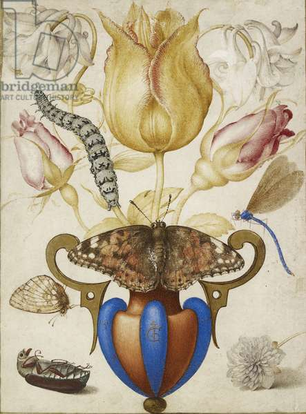 Arrangement of Flowers in a Vase, with Insects, 1594 (Watercolour with gold on vellum)
