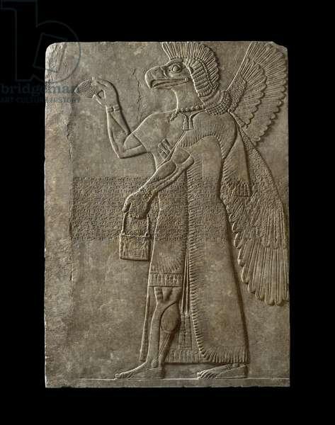 Relief of winged genius facing left, 9th century BC (marble)