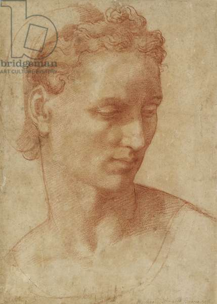 Head of a Woman (chalk on paper)