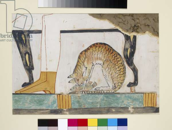 Copy of a detail depicting a cat eating a fish, from a wall painting in the Tomb of Nakht, Thebes, 18th Dynasty, c.1555-1337 (egg tempera on board)