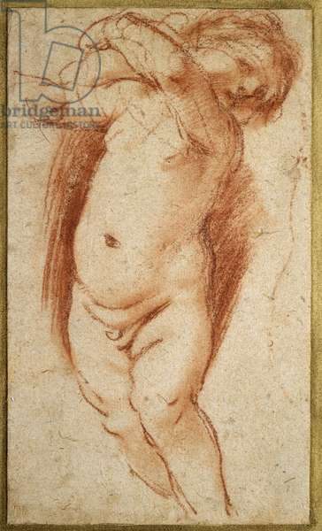 A Putto, 1620 - 1624 (red chalk on greyish paper)