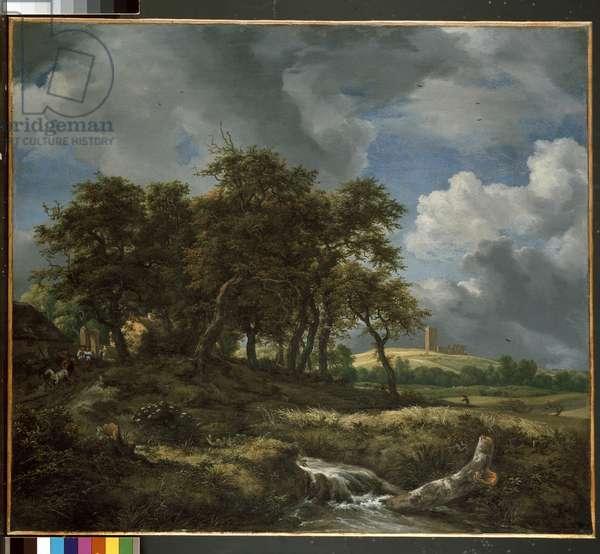 Landscape near Muiderberg, early 1650s (oil on canvas)