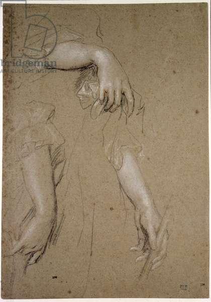 Studies of Hands, 17th century (chalk on paper)