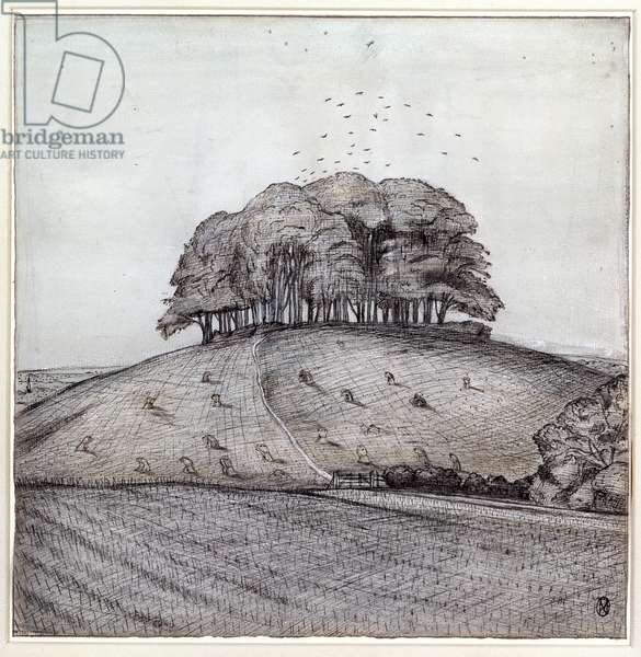 The Wood on the Hill, 1912 (ink, chalk & w/c on paper)