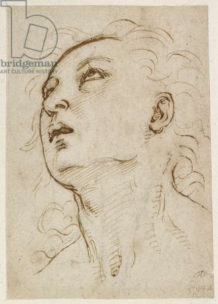 Recto: Head of a young Man gazing upwards, WA1846.156 (pen & brown ink over blind stylus, and some traces of black chalk)