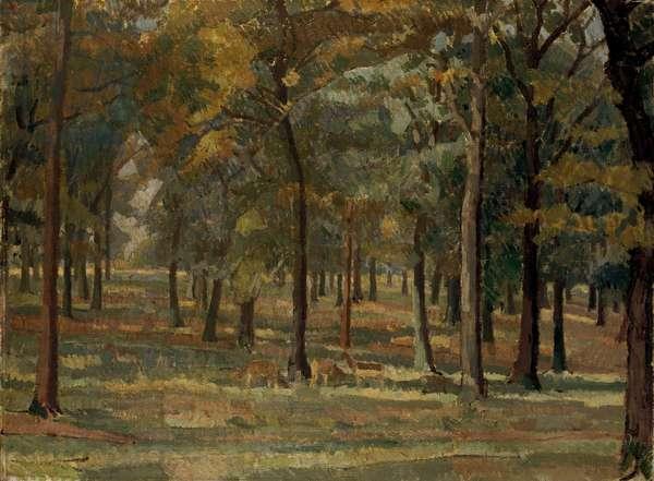 Richmond Park, 1914 (oil on canvas)