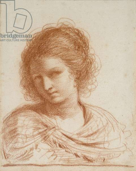 Head of a Young Woman, 1650 - 1666 (red chalk on white paper)