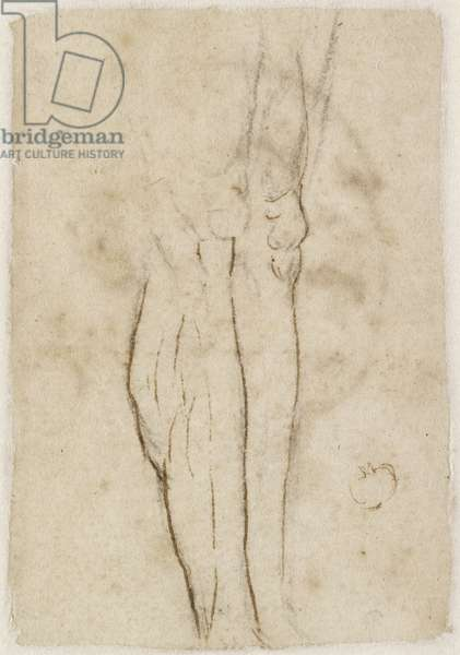 Verso: Sketch of a pair of Legs, WA1846.156 (pen & brown ink over black chalk)