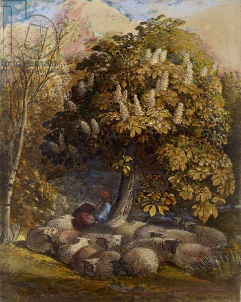 Pastoral with a Horse Chestnut Tree, c.1830-31 (watercolour and bodycolour)