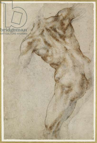 Nude male Torso (pen and brown ink with black chalk on off-white paper)  Verso: Black chalk)
