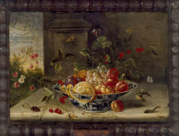 Decorative Still-Life Composition with a Porcelain Bowl, Fruit and Insects (oil on copper)