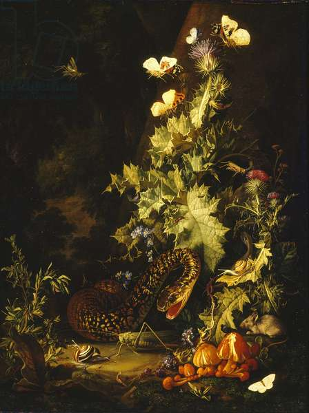 Still Life with a Snake (oil on canvas)
