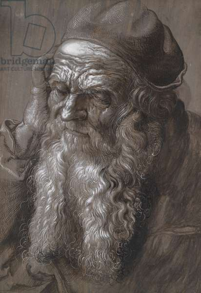 An old Man aged 93: St Jerome (brush and ink)