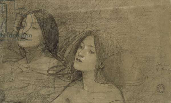 Study of two Nymphs for 'Hylas and the Nymphs' (black chalk with some heightening on a faded grey paper)