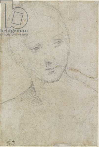 Recto: Study of the Head of a young Woman, WA1846.157 (black chalk on off-white paper)