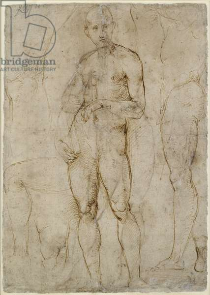 Verso: Nude Study for a St Paul, WA1846.163 (pen & brown ink, some possibly unrelated blind stylus marks)