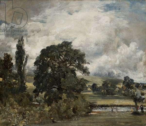Water Meadows Near Salisbury, 19th century (oil on canvas)