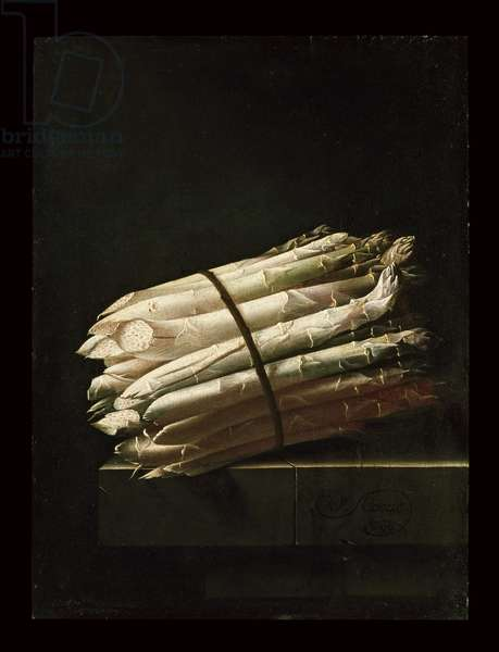 Still Life of Asparagus, 1699 (oil on paper laid on panel)