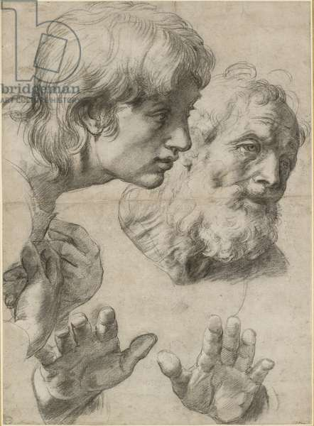 Studies of the heads of two apostles and of their hands, WA1846.209 (black chalk over pounced underdrawing with some white heightening)