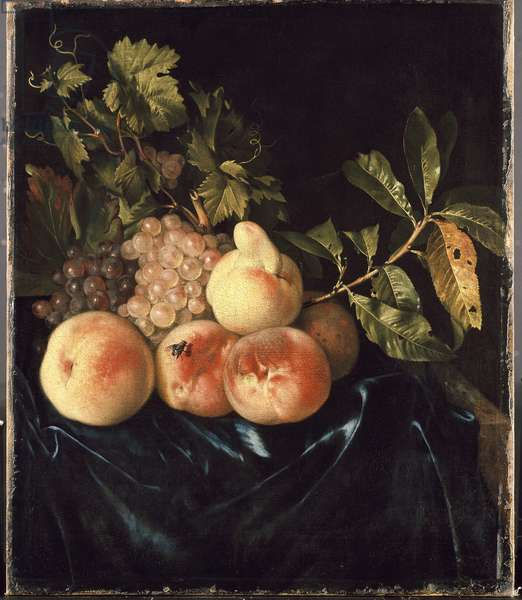 Still Life with Peaches and Grapes (oil on canvas)