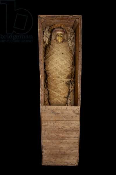 Mummy in coffin, from Hawara (mixed media)