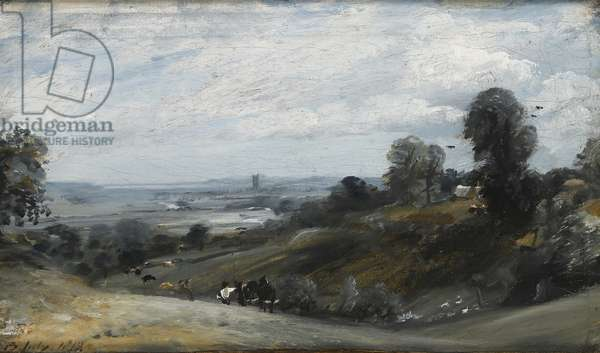 Dedham Vale from Langham, 19th century (oil on canvas)