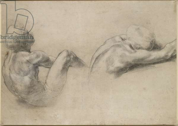 Recto: Two nude Studies, WA1846.210 (black chalk with white heightening and traces of blind stylus)