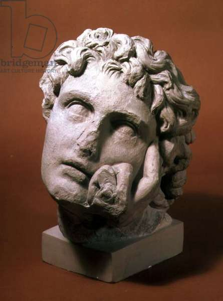 Head of a youth (marble)