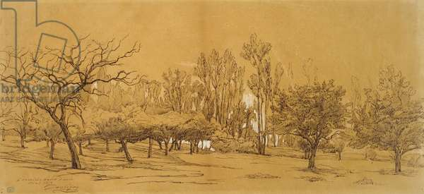 View of an Orchard at Saint-Denis (pen and black ink, heightened with white bodycolour and touched with black chalk or charcoal, on stiff off-white paper)