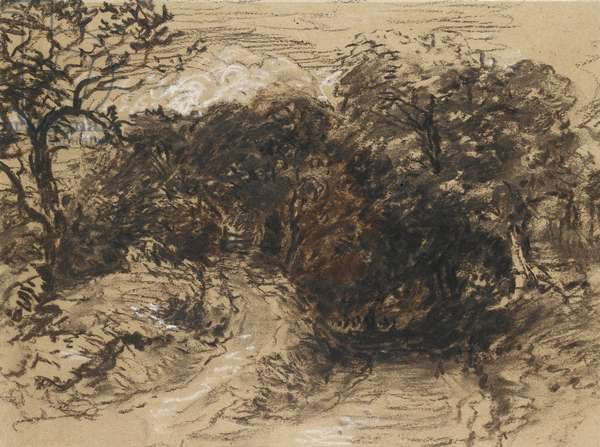 A hollow Lane near Harborne, Derbyshire (black chalk with touches of white and some brown wash)