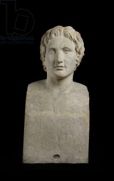 Cast of Azara Alexander, near Tivoli, original dated 1st century AD (plaster)