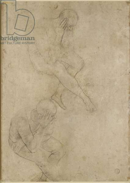 Verso: Two Studies of an elderly Man, c.1519 (black chalk with white heightening and traces of blind stylus)