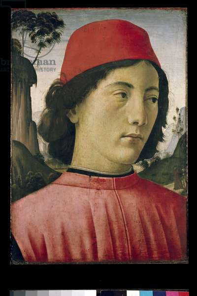 Portrait of a Young Man, 15th century (oil on panel)