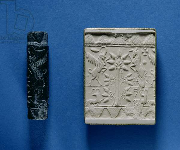 Cylinder seal and impression (plaster)