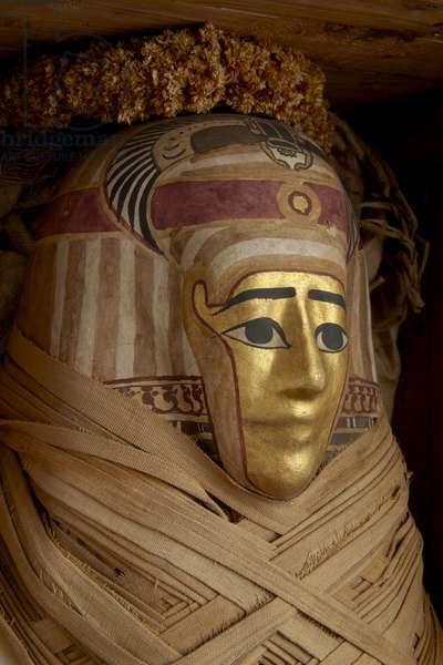 Ptolemaic coffin, mummy with gilt mask and floral garlands (cypress wood)