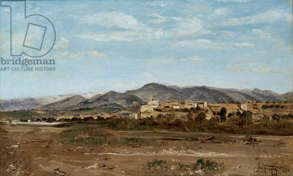 Village of Lauris, in Vaucluse on the Banks of the River Durance, 1868 (oil on canvas)