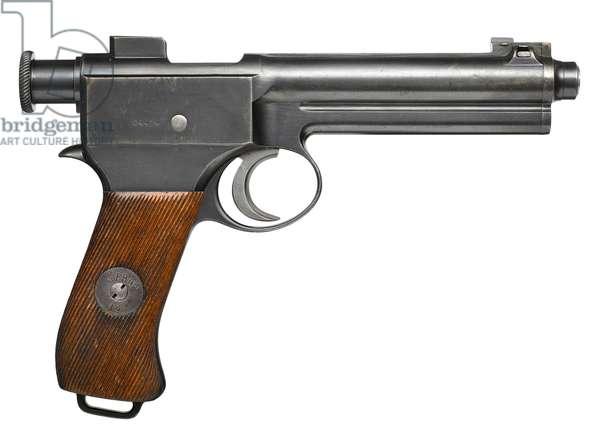 Roth Steyr Model 1907 centrefire self loading pistol, c.1910 (photo)