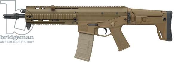 Centrefire automatic rifle, 2010 (photo)