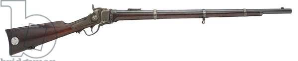 Centrefire breech-loading rifle, 1866 (photo)