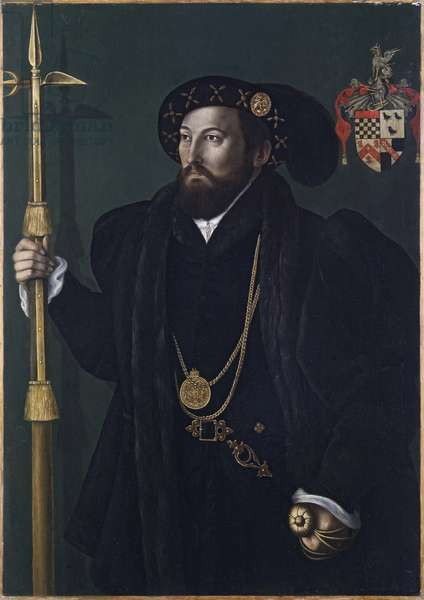 Portrait of a member of the Palmer family, c.1539 (oil on panel)