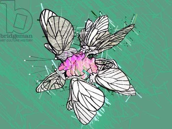 Beautiful Butterfly, 2019, (mixed media)